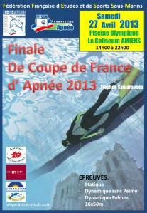 Affiche Amiens -2013-3